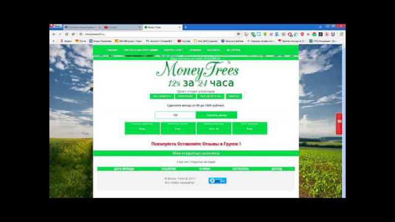 Money Trees 12% за 24 часа Рефбек 100%
