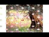 Дорога цветов ( Музыка из кинофильма