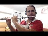 Agnus Dei - (instrumental) - flauta transversal
