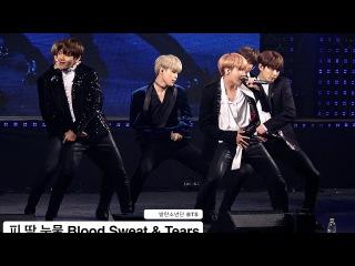 방탄소년단 BTS[4K직캠]피 땀 눈물 Blood Sweat & Tears 논산@161222 Rock Music