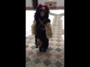 Наш любимий ведмедик!