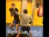 14.01.2017. Fight Club PitBull