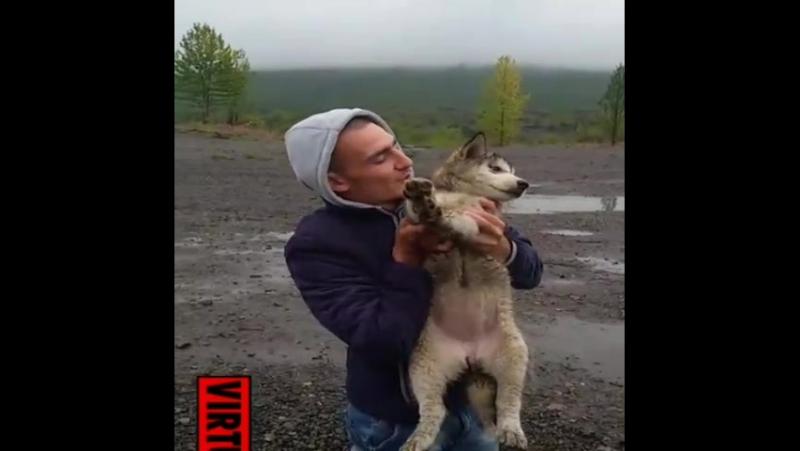 грк Барголд