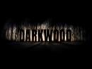 Darkwood | Первая ночь в темном лесу....