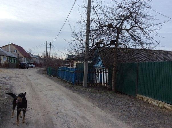 Фото №456239551 со страницы Николая Кропачева