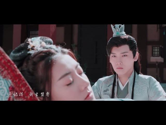 【坦诚夫妇】叶炫清 - 九张机 | 电视剧《双世宠妃》饭制MV | 邢昭林 梁洁 | The Eternal Love