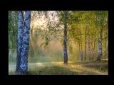 Лукьяновка- Сок берёзовый с горечью