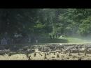 Видеозапись со съёмок второго сезона «Ривердейла», которые проходили вчера на берегу океанского залива «Barnet Marine Park» в Ва