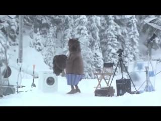 Медведь_неожиданно_появился_на_съемках__Кураж-Бамбей_Samsung_Russia121