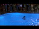 Не детское кино Not Another Teen Movie (2001)Комедия [360]