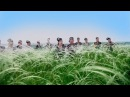 Татарстан республикасы фольклор музыкасы дәүләт ансамбле Степьләрдә егет печән чаба