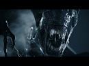 Aliens vs Predator 2010 Multiplayer Alien 30 01 2017