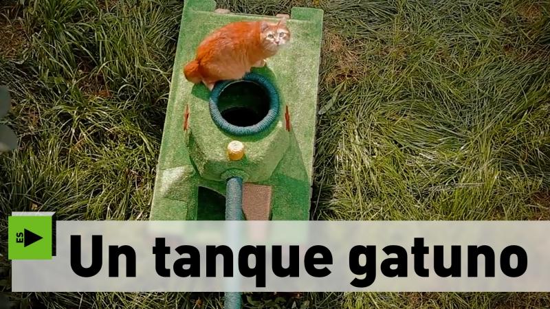 Un tanque gatuno