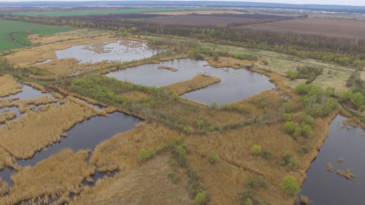 восточная часть ВБУ  Терновские поды, искусственные озера и заболоченные территории на месте старых отстойников