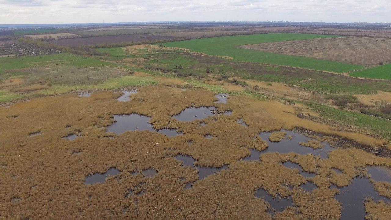 западная часть ВБУ  Терновские поды, тростниковые болотами с плесами открытой воды