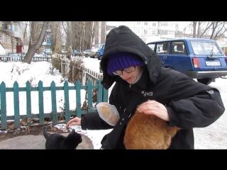 Кролик Блэк с котятами