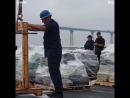 Береговая охрана США перехватила партию 18 тонн кокаина 180 млрд рублей