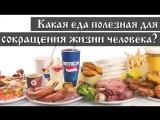 Какая еда полезная для сокращения жизни человека, часть 3