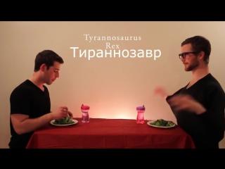 Как едят животные (6 sec)