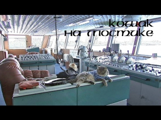 Кошак на мостике: Vehicle Simulator - лайнер Принцесса Мария - Гогланд-Хельсинки