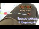 Зимняя рыбалка в Подмосковье Окунь на мормышку д. Первомайское