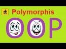 What is Polymorphism (OOP principles)