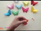 Бабочки, очень красивые бабочки!