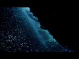 Atlantic.The.Wildest.Ocean.on.Earth.e03.BDRip.720p.Rus.Eng.AlexFilm