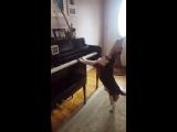 Собака играет на пианино и подвывает!