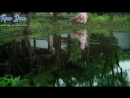 Three Lives Three Worlds Ten Miles of Peach Blossoms EP29