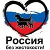 Киров - ВСЕРОССИЙСКИЙ МИТИНГ ПРОТИВ ЖИВОДЕРОВ!