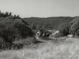 Погоня за караваном (Чёрный кнут Зорро)
