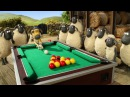 Барашек Шон 2 сезон 4 часть Shaun the Sheep 2 season 4 part