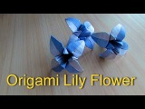 Origami Lily Flower (Designed by Henry Ph