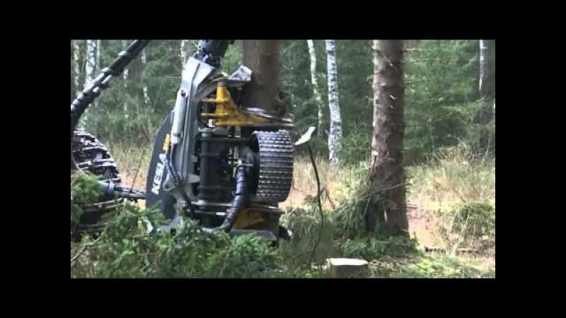 Адская машина для рубки леса