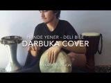 Hande Yener - Deli Bile  Darbuka Cover by Murat Yal