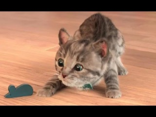 My Favorite Cat Little Kitten Pet Care - Play Fun Cat Games for Baby, Toddlers or Children