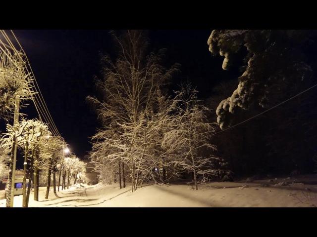 Зимовье зверей Конец цитаты