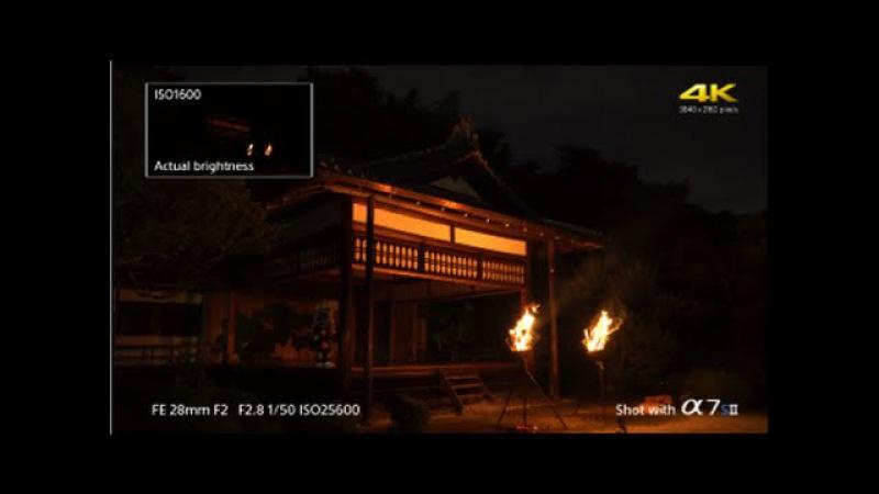 Sony | α | α7S II - 4K low-light ISO comparison movie