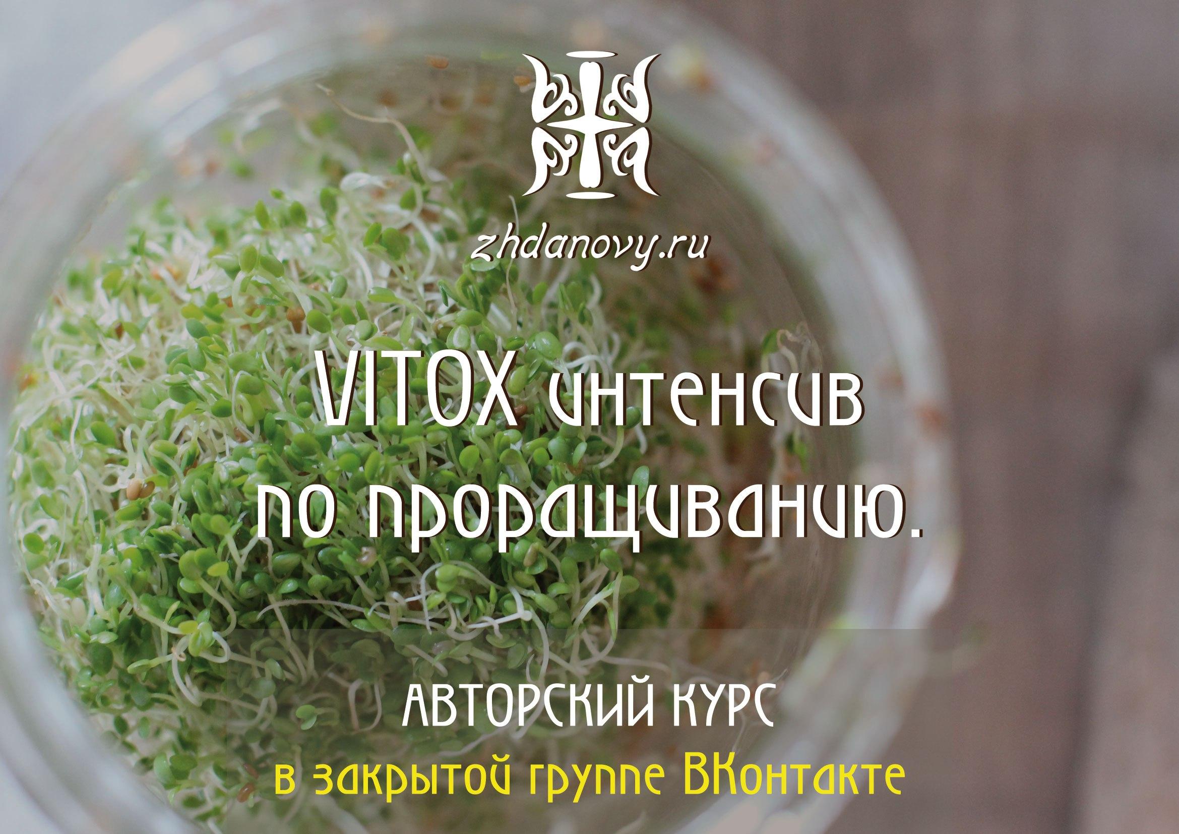VITOX интенсив по проращиванию