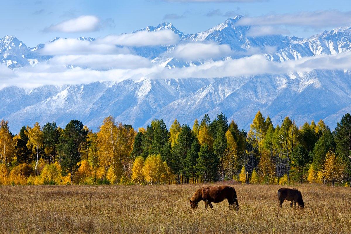ВЕГа-тур в Сибирский Тибет