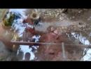 раскопки древнего города евпатория