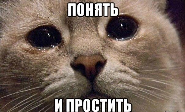 Mine-Play: Новости #1 Понять и простить :(