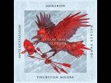 Merzbow, Thurston Moore, Gustafsson, P
