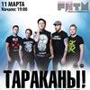 Тараканы! Обнинск! 11.03.2017