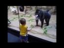 обезьяна-весельчак