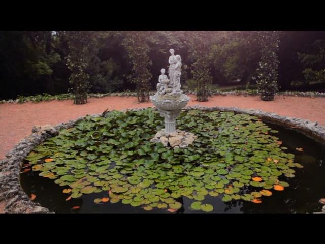 Никитский Ботанический Сад. Парк приключений