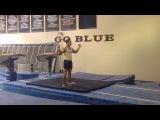 University of Michigan Men's Gymnastics 2017 Promo Video