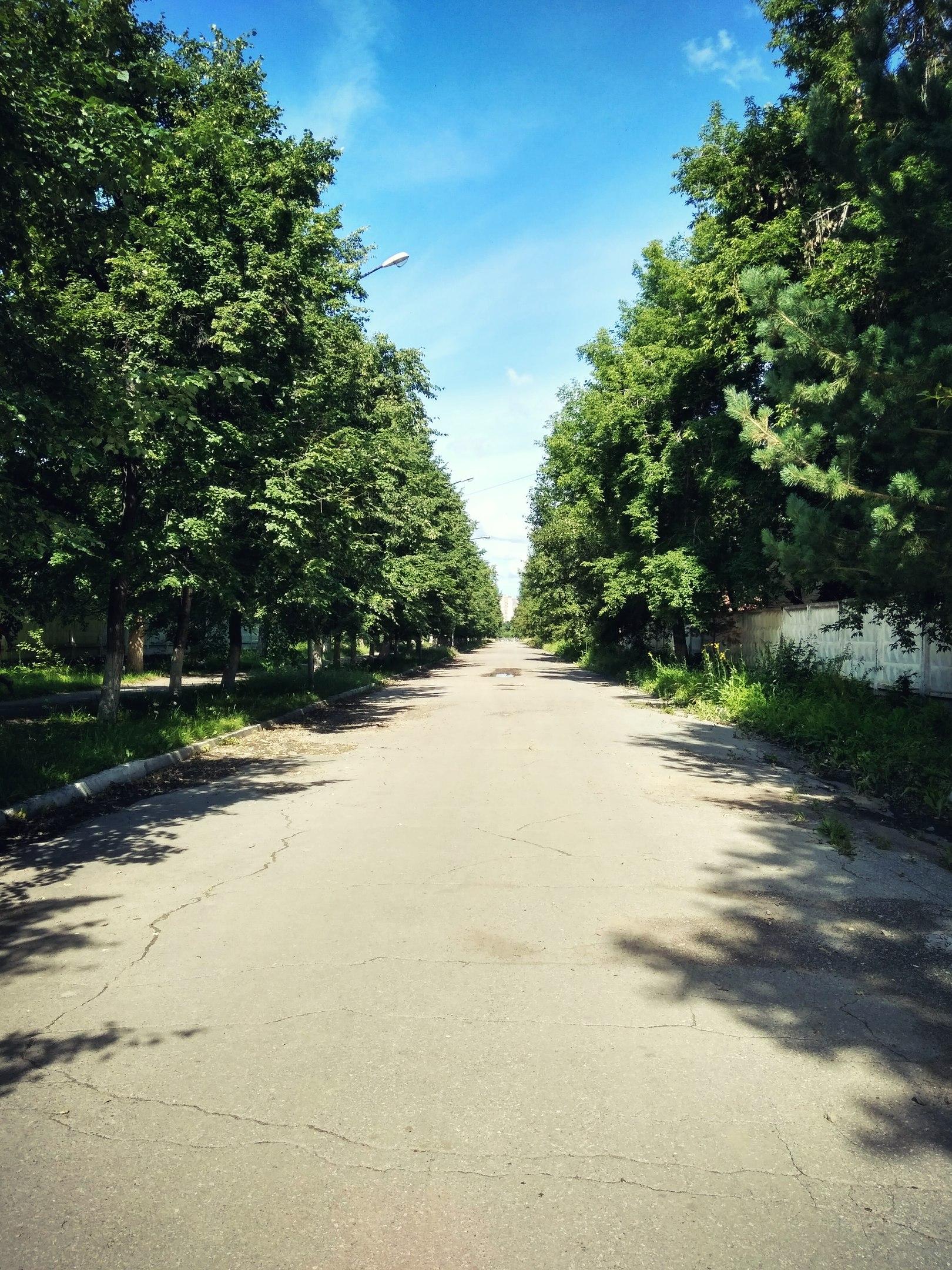Новосибирск. Закрытая аллея Военного городка