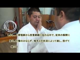 mawashi uke bunkai